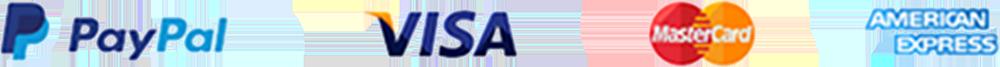 we accept VISA, PayPal, Mastercard and AmEx